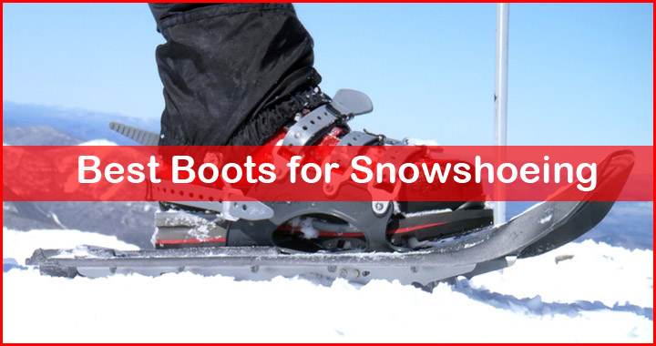Best Shoes For Snowshoe Running