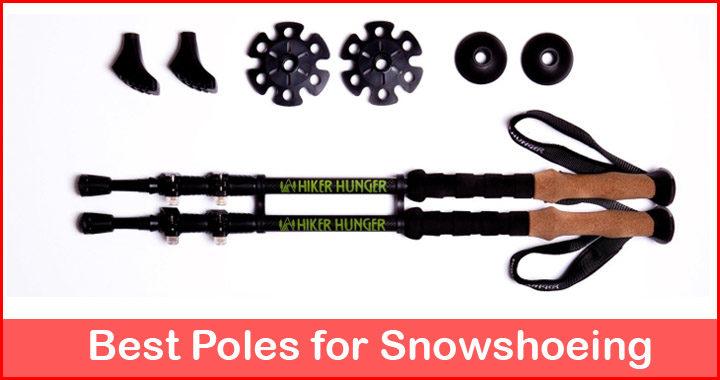 best snowshoe poles