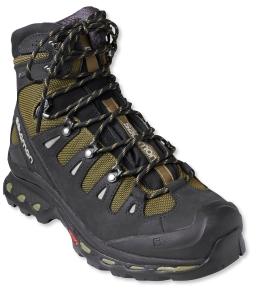 snowshoe boots - Salomon Quest 4D 2 GTX