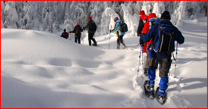 how much snow do you need to snowshoe