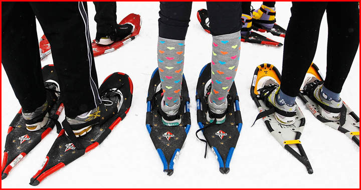 types of snowshoes