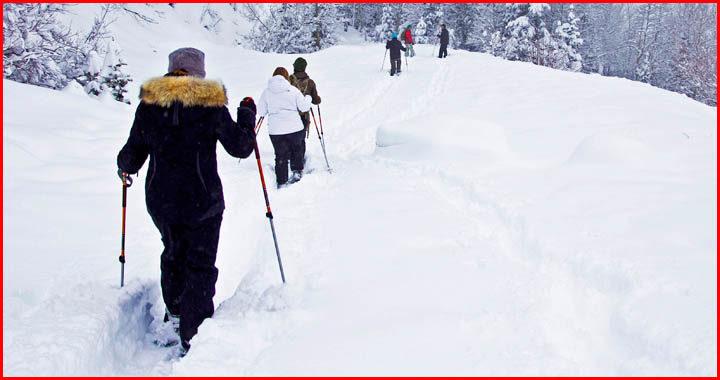 is snowshoeing hard
