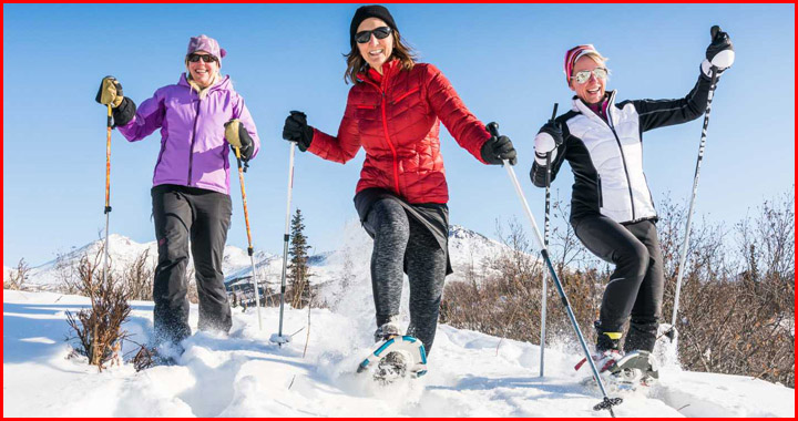 snowshoeing guide for beginners
