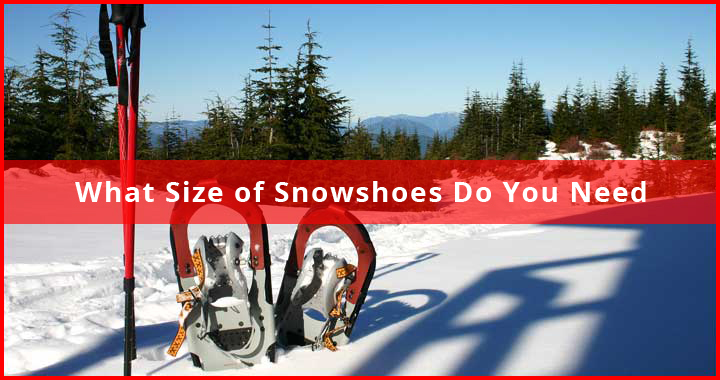 What Size Snowshoes do you Need
