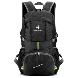 NEEKFOX Lightweight Backpack