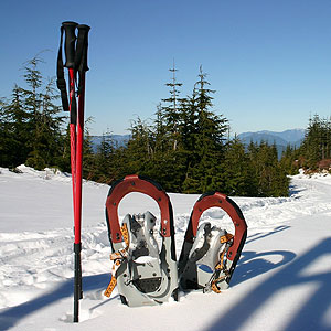snowshoes and trekking pole